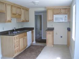Lowes Stock Kitchen Cabinets by Kitchen Kitchen Kompact Cupboards Home Depot Lowes Sink Cabinets