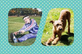 Tierarzt Bad Wildungen Physio Für Hunde Von Wassergymnastik Bis Elektrotherapie Urban Dog