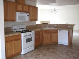 Inside Kitchen Cabinets The Cheapest Kitchen Cabinets Gorgeous Budget Gallery 11098 Home