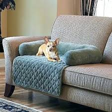 best sofa fabric for dogs best sofa fabric for pet owners www resnooze com