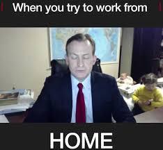 Robert Memes - bbc world news viewers share hilarious memes poking fun at robert