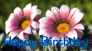 happy birthday flowers wishes quotes and hd wallpapers