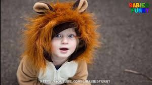 Baby Lion Costume Lion Halloween Costume For Baby Cute Babies Videos 2017 Youtube