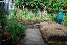 Mulching Vegetable Garden by Straw Bale U0026 Lasagna Gardening Sheet Mulching Layering