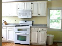 Replacement Kitchen Cabinet Doors With Glass Inserts Replacing Kitchen Cabinets Creative Important Replacing Kitchen