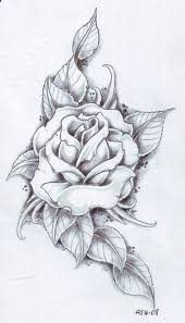 design flower rose drawing pictures rose tattoo designs baby fairy eagle jpg 300525 tattoos