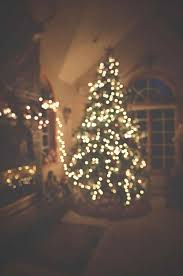 small white christmas tree space s small white christmas tree space s itus yuall