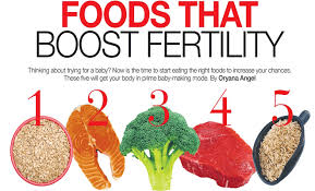 foods that increase egg fertility u2013 pregnancy tips