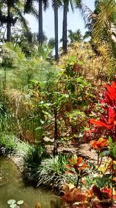 Sunken Gardens Family Membership A Walk Through St Pete U0027s U0027sunken Gardens U0027 Wusf News