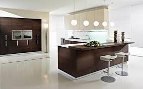 kitchen design san diego contemporary kitchens designs contemporary kitchen design pedini san