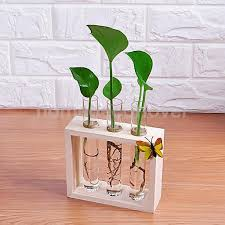 crystal glass test tube vase in wooden stand flower pots for