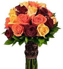 black roses the meanings of black roses from roseforlove