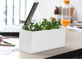 Desk Plant Set Of 3 White Plastic Planter Set Feelgift