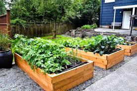 enjoyable ideas raised bed vegetable garden design layout photo