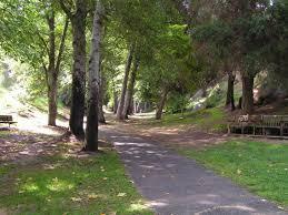 Ucr Botanical Gardens Ucr Today Botanicgardens