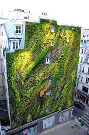 best living walls ideas on wall gardens indoor design vertical
