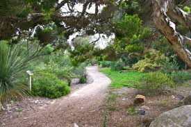 Quail Botanical Gardens Free Tuesday File Quail Botanical Gardens Jpg Wikimedia Commons