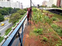 vegetable garden inhabitat green design innovation