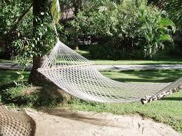stingray camping hammock tent camping hammock tent forest