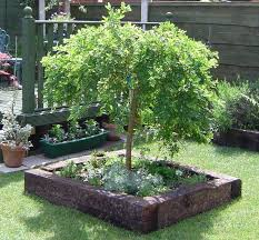 Gardens With Sleepers Ideas Raised Bed Projects With Railway Sleepers