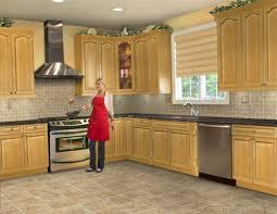 Raleigh Kitchen Design 48 Latest Modern Kitchen Designs Modern Kitchen Designs Uk