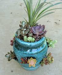 succulent tutorial strawberry pot mcfarland designs