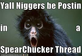 Funny Nigger Memes - yall niggers be postin in a spearchucker thread cheezburger