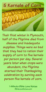 thanksgiving thanksgivingstory factsthanksgiving facts for