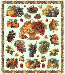 imagenes gratis de frutas y verduras mejores 9 imágenes de frutas verduras etc en pinterest frutas