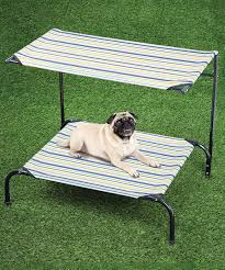 etna products canopy cot pet bed zulily