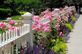 what kind of fences make good decorative fences hercules fence