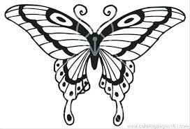 coloring page butterfly monarch coloring page of butterfly butterflies coloring pages butterflies