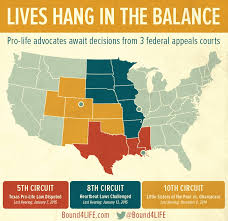 federal circuit court map in america s heartland three federal appeals courts to rule soon