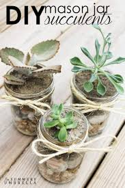 succulent planters for sale 25 unique mason jar succulents ideas on pinterest mason jar