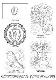 united states symbols coloring pages california reptiles coloring page life science pinterest