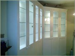 wall display cabinet with glass doors glass door display cabinet njpianomoverpros org