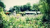 sunbury on thames walled garden 13 08 16 youtube