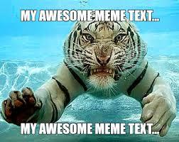 Tiger Meme - meme maker tiger