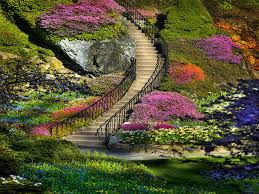 beautiful flower gardens my amazing things blog beautiful
