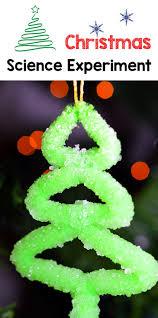 borax crystals easy christmas ornament experiment