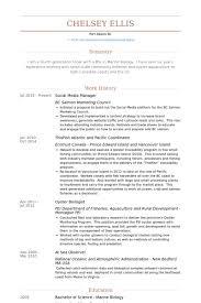 social media resume best solutions of social media marketing resume sle for your