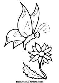 free butterflies coloring pages thelittleladybird com