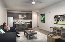 apartment student apartments tampa interior decorating ideas