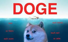Top Doge Memes - doge meme lost meme best of the funny meme