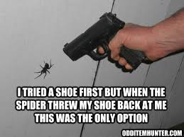 Spider Meme - spider vs gun odd item hunter