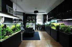 Aquascaping Shop Green Aqua Aquashop Budapest Fishroom Ideas Pinterest