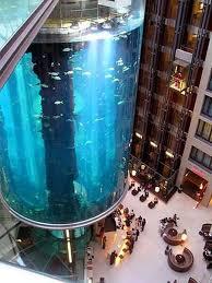 chambre aquarium aquadom le plus grand aquarium cylindrique au monde
