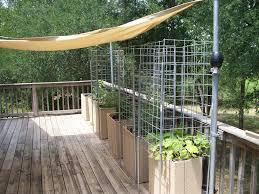 starting a container vegetable garden u2013 gentleman farmer