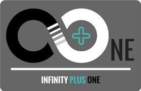 one organization infinity plus one anna terese stone