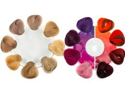 Color Palette Examples by How To Hair Color Palette